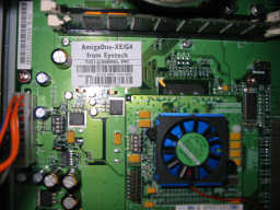 Amiga One and his processor (under the fan)